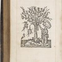 22. new testament in greek