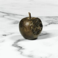 205. Diego Giacometti