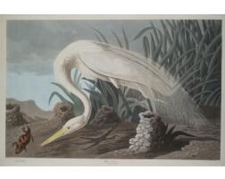 12. John James Audubon (after)