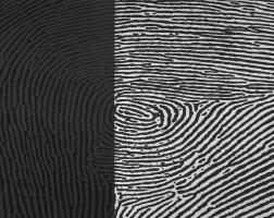 53. a. balasubramaniam | traces (diptych)