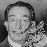 Salvador Dali: Artist Portrait