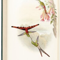 11. gould and sharpe, a monograph of the trochilidae, or family of humming-birds. london, [1849]-1861, 5 volumes