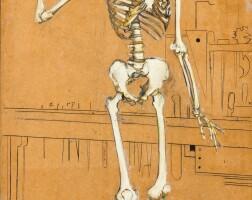 116. emile salkin | squelette