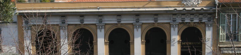 museul_histoire_naturelle.jpg