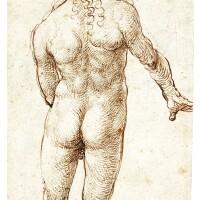 107. Domenico Campagnola