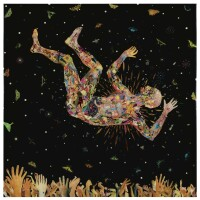 13. Fred Tomaselli