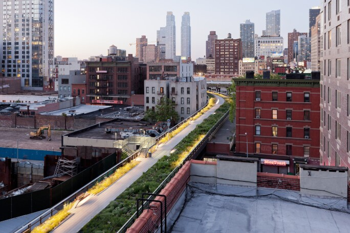 6 High Line - Wildflower Field(3).jpg