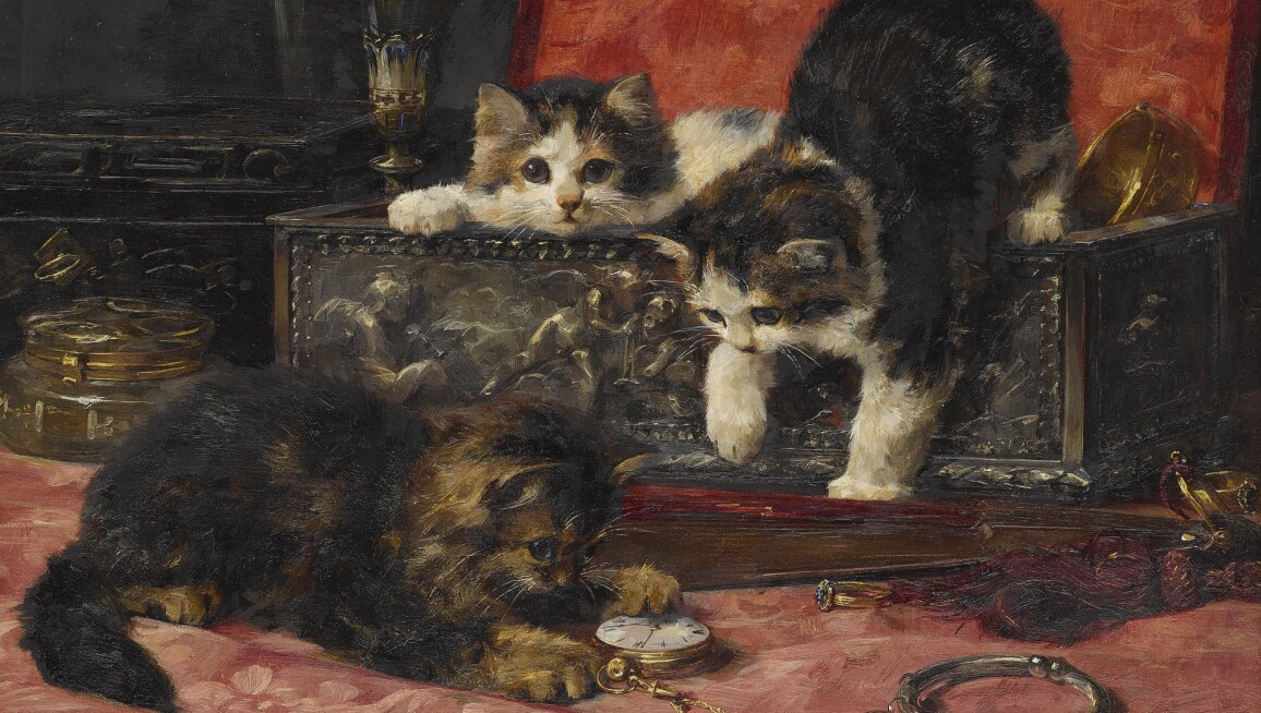Three kittens in a jewel box.