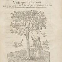 41. bible in latin