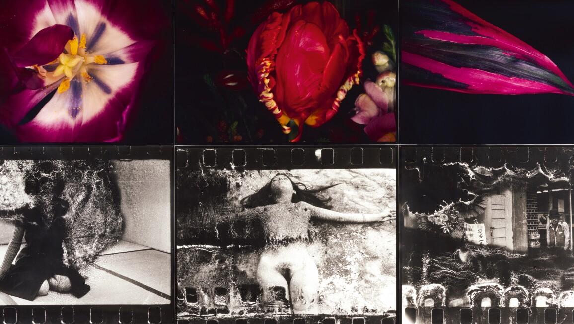 photographs-1.jpg