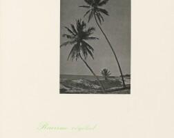 105. Marcel Broodthaers