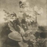 42. Heinrich Kühn