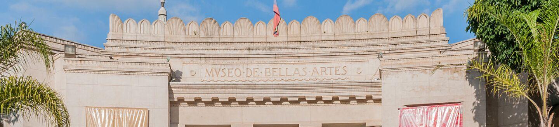 Exterior view of  Museo de Bellas Artes.